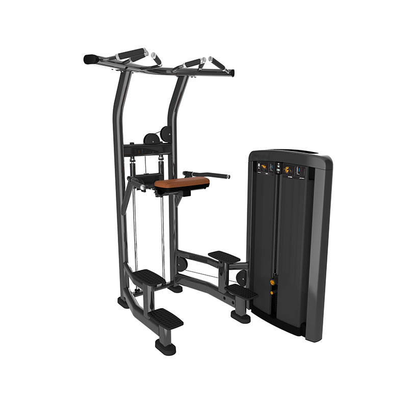 Life Fitness Strength Insignia-ADC